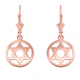 Encircled Star of David Earrings in 9ct Rose Gold