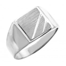 Phoebus Signet Ring in 9ct White Gold