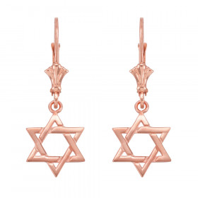 Star of David Earrings in 9ct Rose Gold